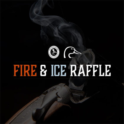 fire-ice-product