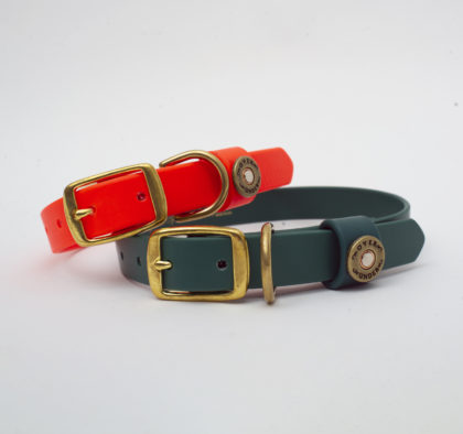 Dog Collars- Retouched